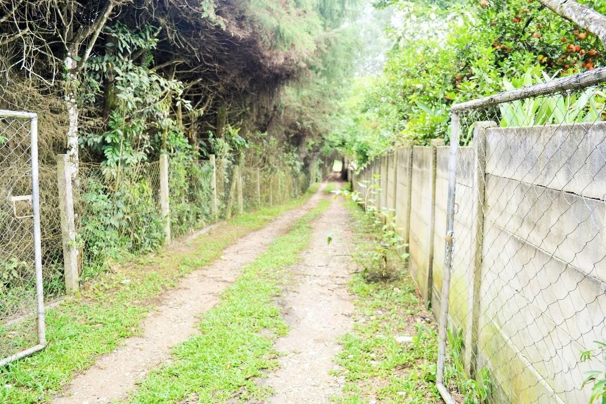 Terreno – Rua Newton Laporte, 155 – Bocaiuva do Sul -Ref.  3272