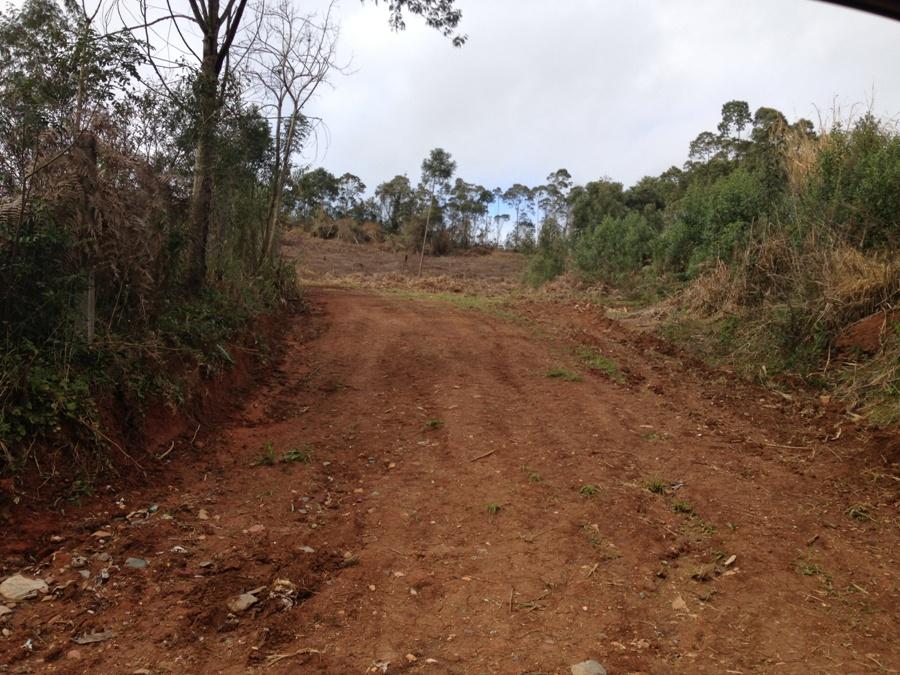 Área – Marginal sentido Campo Largo – Itaqui – Campo Largo – Ref. 3350